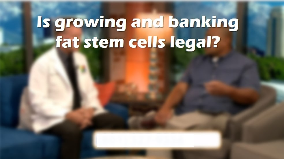 fat stem cell banking
