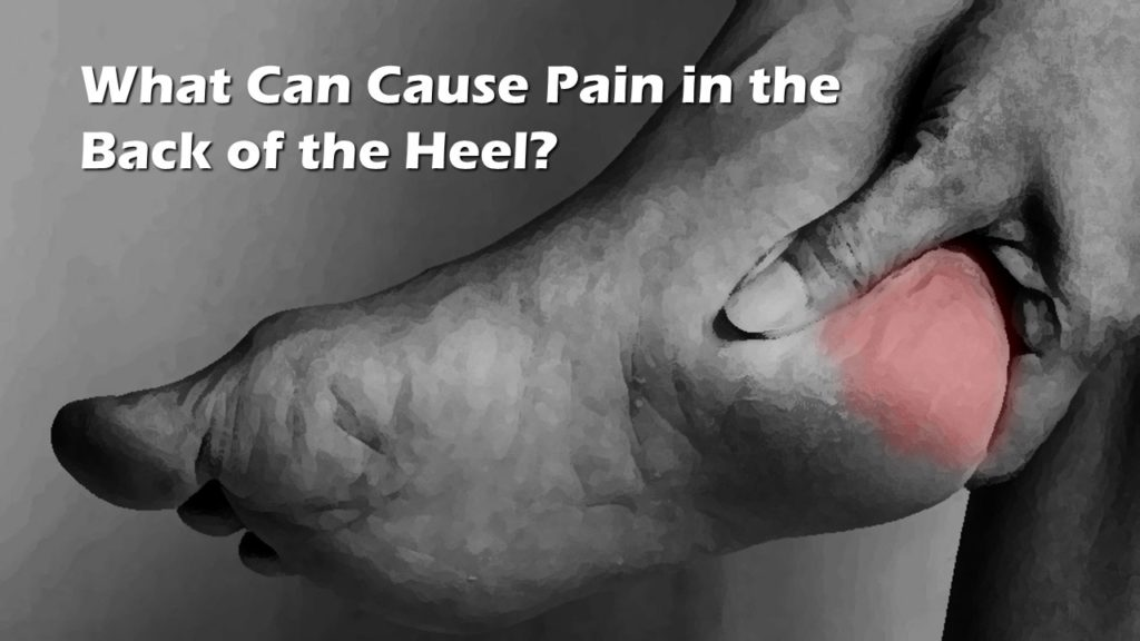 pain in the back of the heel